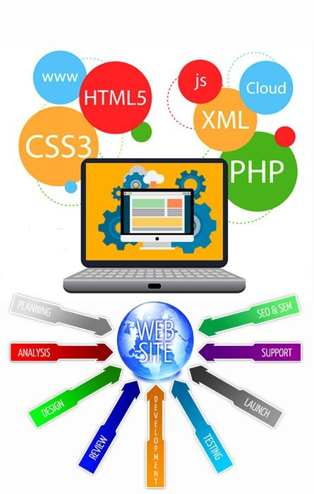 Hire Web Developer & SEO Specialist