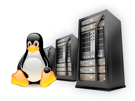 Linux Web Hosting Services with cPanel